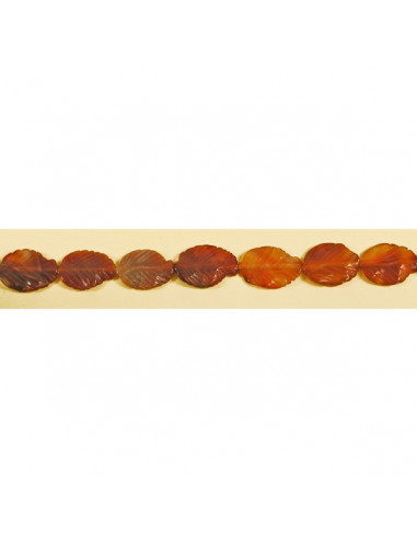 Agate cornelian natural strip ho 20x30mm