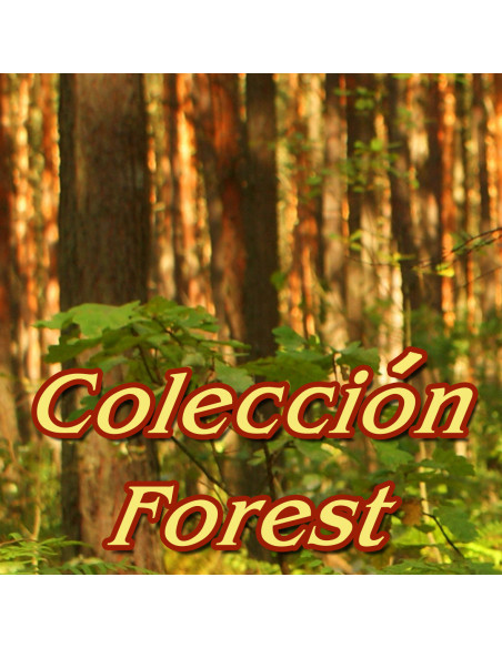 Coleccion Forest